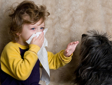 аллергия1