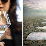 Алкогольная зависимость у женщин: как победить