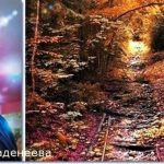 Валентина Ваденеева: Перестали мучить головные боли. Появилось желание жить