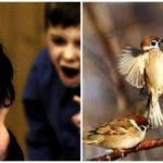 Как помочь адаптации ребенка в детском саду
