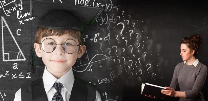 Записки молодой системной учительницы