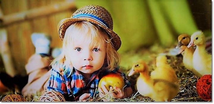Нужен ли детям детский сад картинка