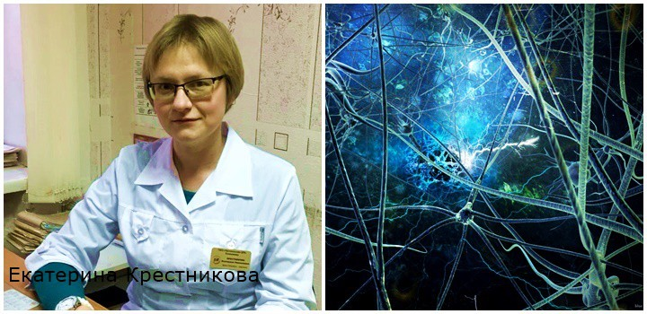 отзыв Екатерина Крестникова
